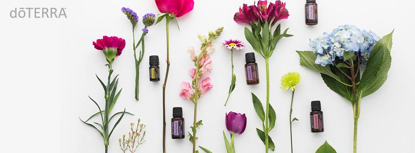 Natural Health Solutions; workshop; essential oils; rotterdam; doter