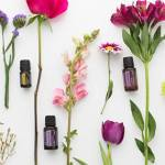 Natural Health Solutions with Essential oils | 20 April The Hague