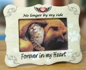 pet sympathy gifts dog cat loss