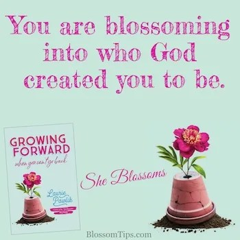 how to accept childlessness blossom tips