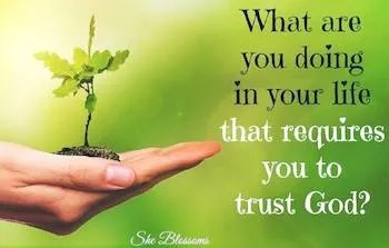 Blossom Tips How to Stop Resisting God's Will for Your Life Exodus 7