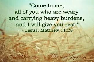 Emotional Freedom in Jesus Christ Exodus 12 Blossom Tips