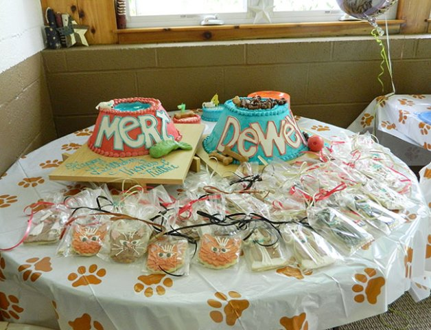 Cute dog and cat birthday party cakes!