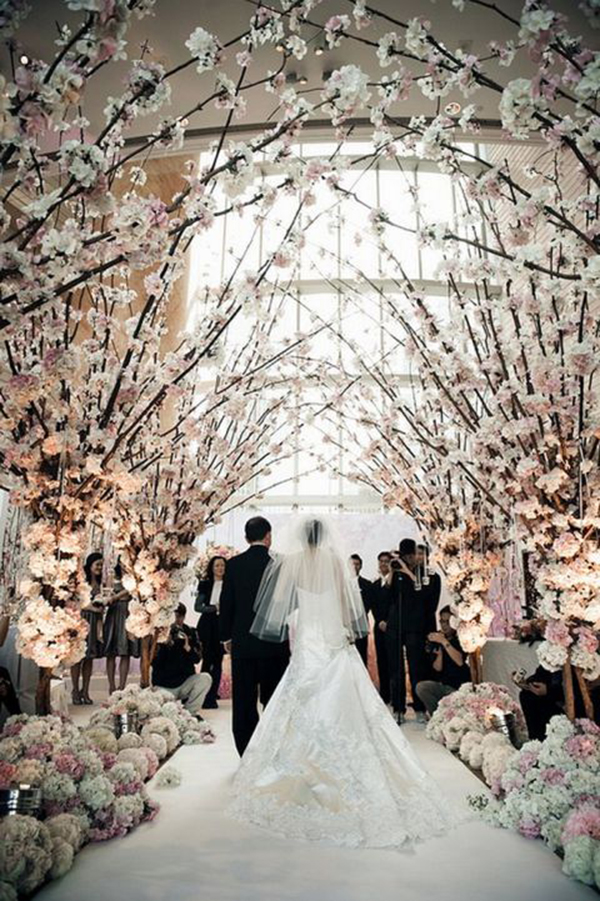 blossoming trees for weddings
