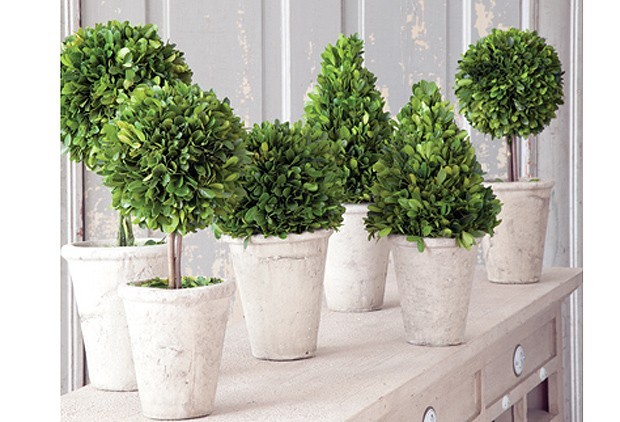 Be All Natural With Topiary Centerpieces!
