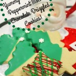 Chocolate Peppermint Mocha Drizzled Shortbread Cookies!