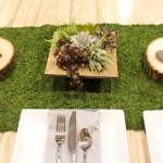DIY Succulent Centerpiece- Love This! -Learn How To Make Them On B. Lovely Events