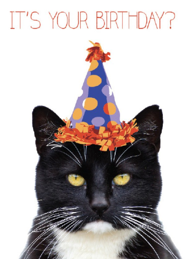 20 Cat Happy Birthday Cards Fb Pictures And Ideas On Meta Networks