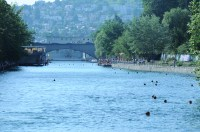 Limmat river with floating heads