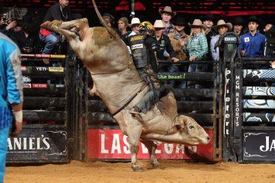 montana bull rider wins