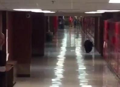 Bear gets inside Bozeman high school  Montana News  billingsgazettecom