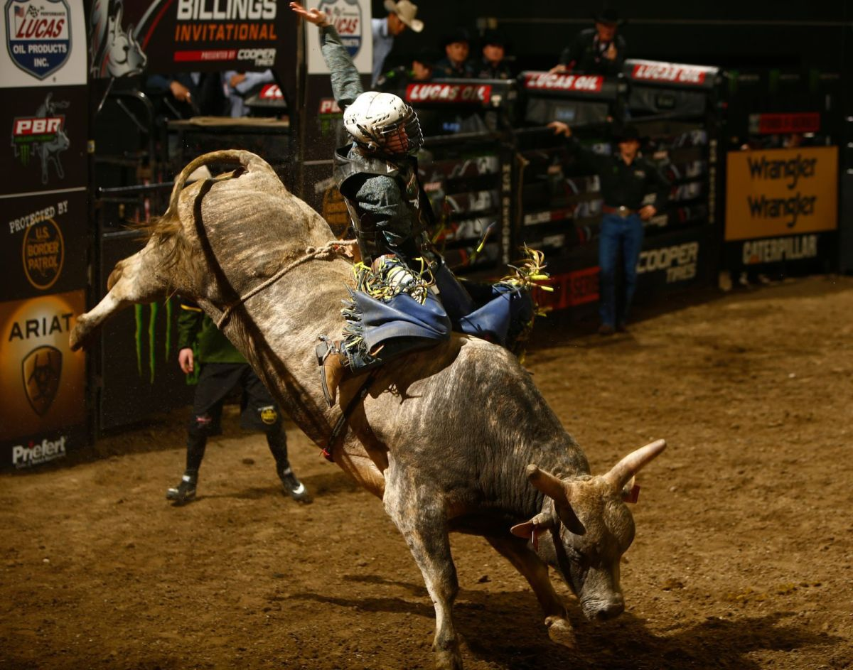 photos bull riders compete