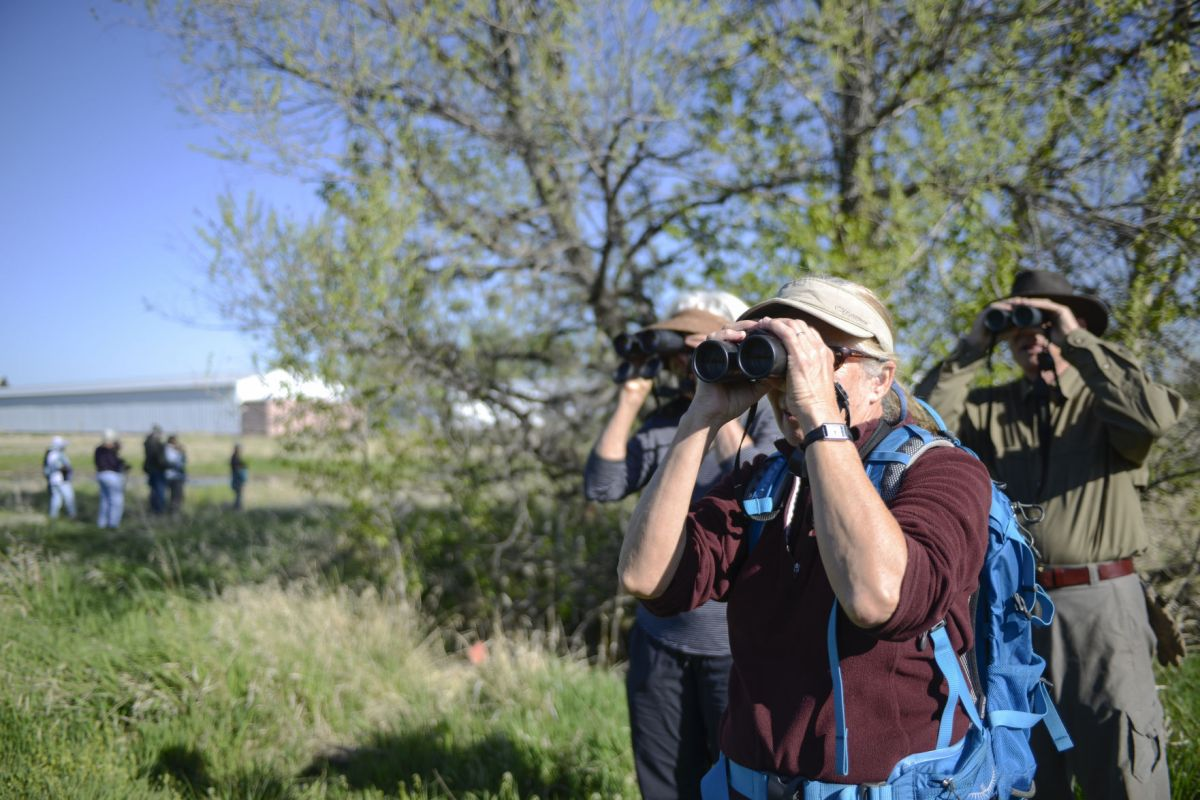 Birdwatchers see potential for Story Mill Park  Outdoors