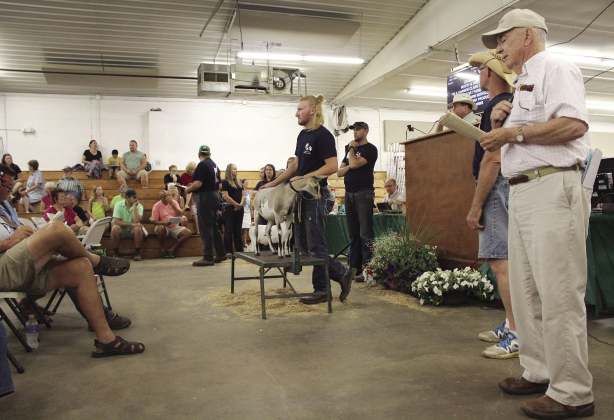 4- Livestock Auction Nets 1.2 Million Elkhart County