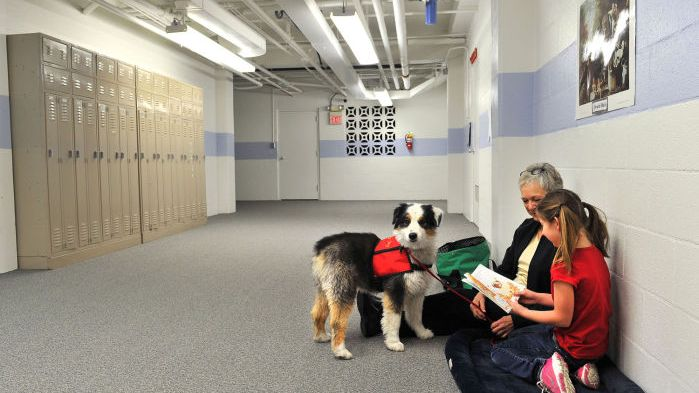 At Radley school therapy dogs lend an ear to help student readers  Helena Local News Feed