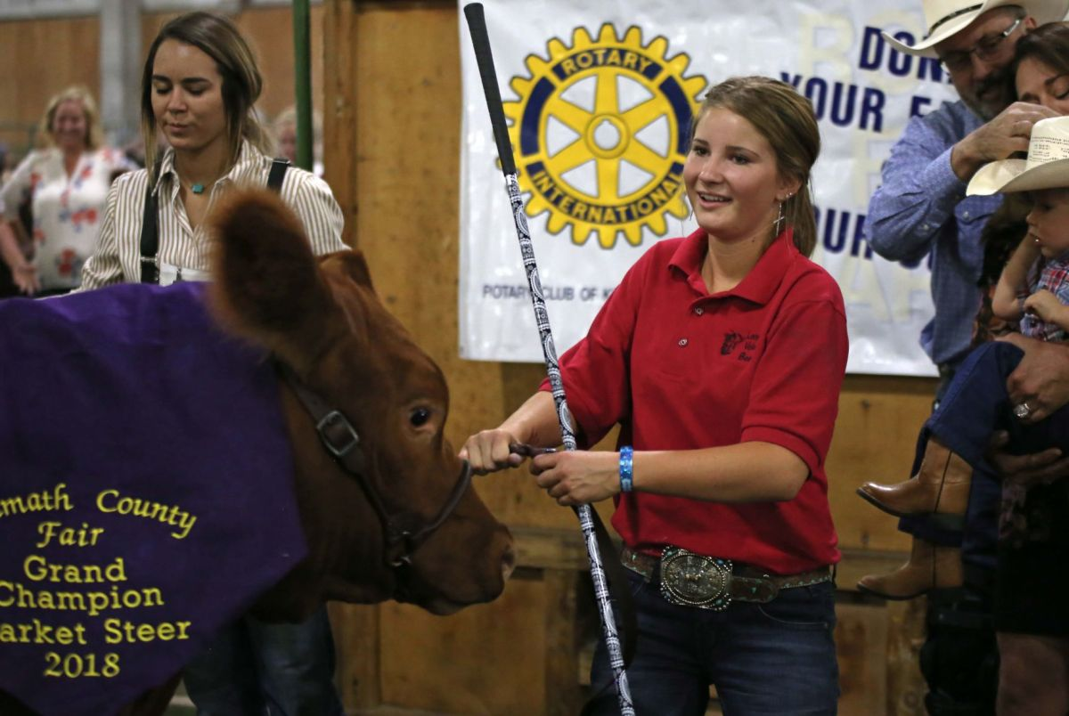 Klamath County Fair 4- Auction