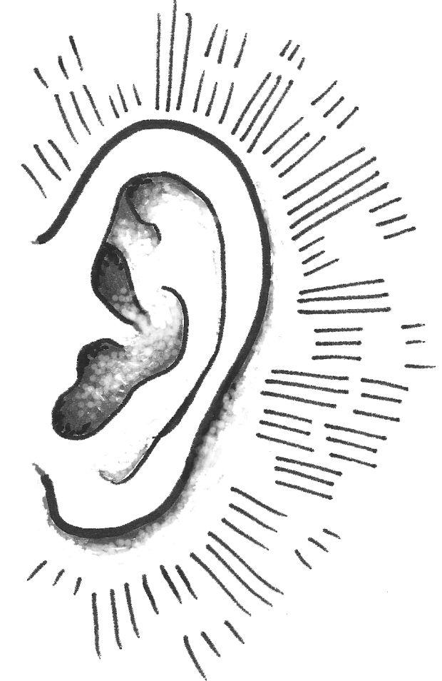 Hair cells may be new hearing loss cure : Daily-cardinal