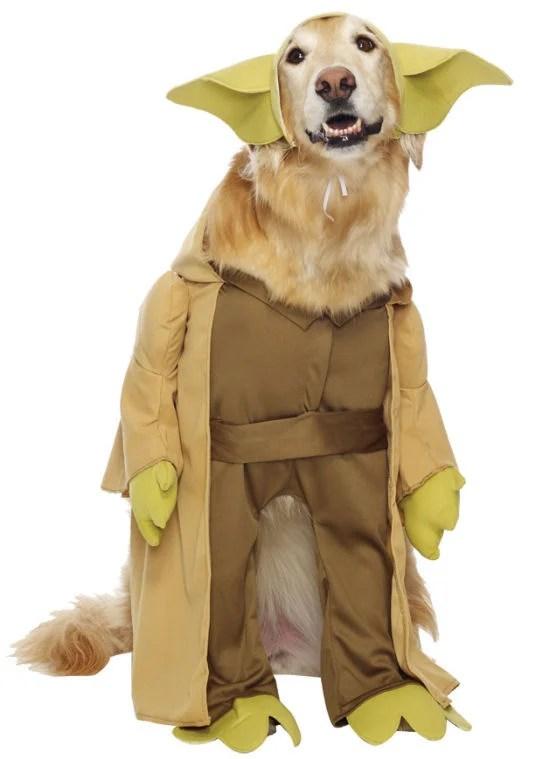 Pics For > Yoda Dog Costume
