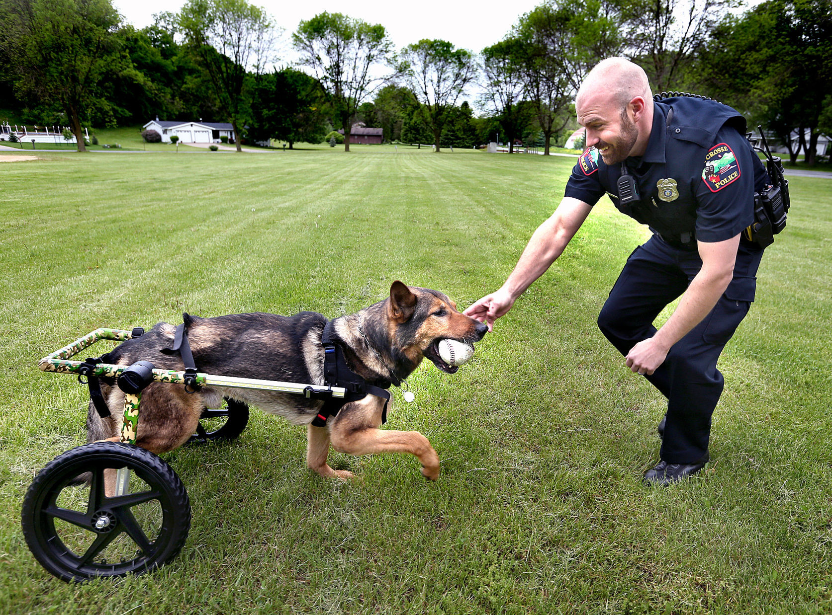 wheelchair dog baby trend convertible high chair 39this means everything to us 39 retired la crosse police