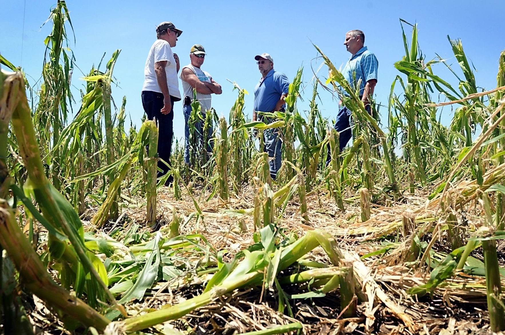 Crop Insurance Adjuster Cover Letter | Letters From A Farmer In Ohio ...