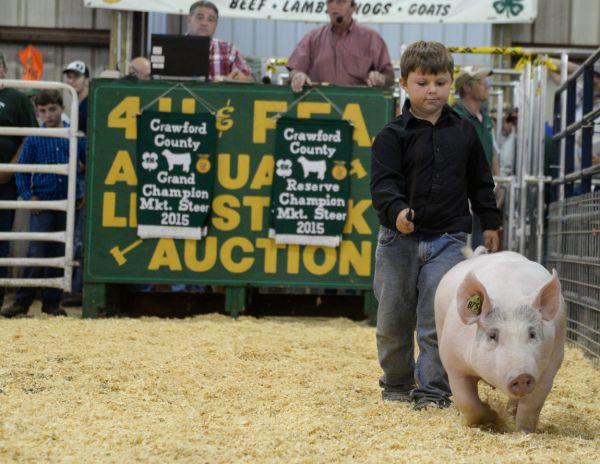 Exhibitors Happy Profitable Day Livestock