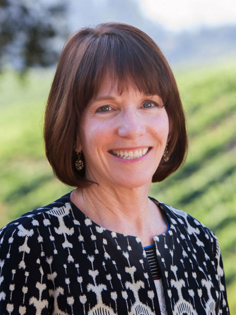Bank of Marin hires commercial lending team in Napa  Business  napavalleyregistercom