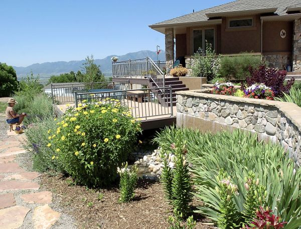water wise smart landscaping