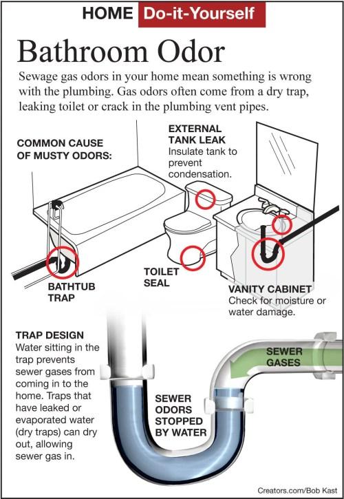 find a sewer gas odor in a bathroom