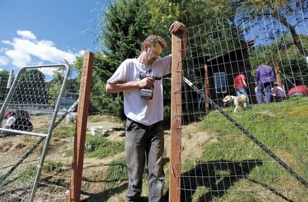 volunteers build fences to