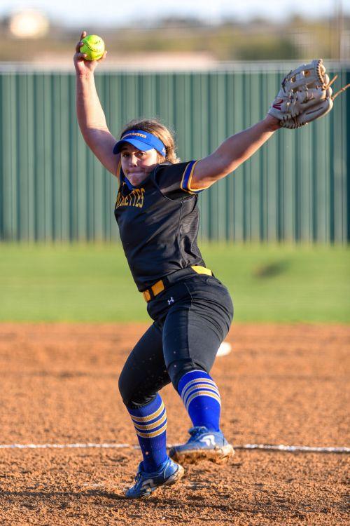 Funny Names For Back Of Softball Jersey : funny, names, softball, jersey, Pantherettes, Surge, Ladycats, Theparisnews.com