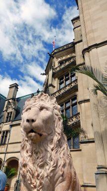 Asheville And Vanderbilt Legacy Stories