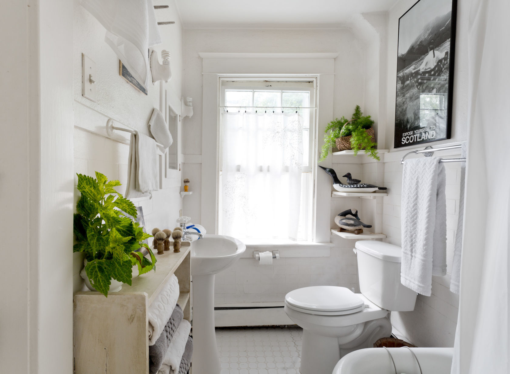 Bathroom 9 Ways To Spruce Up Your Bathroom Home Garden Tucson
