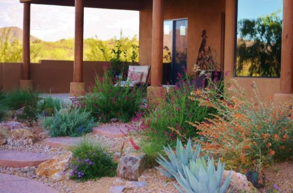 xeriscape means dry dull