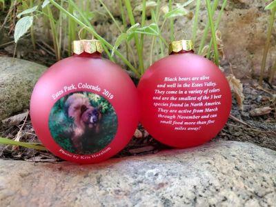 Obscene Christmas Ornaments