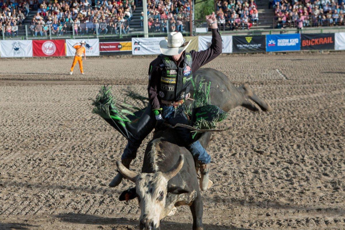 professional bull riders return