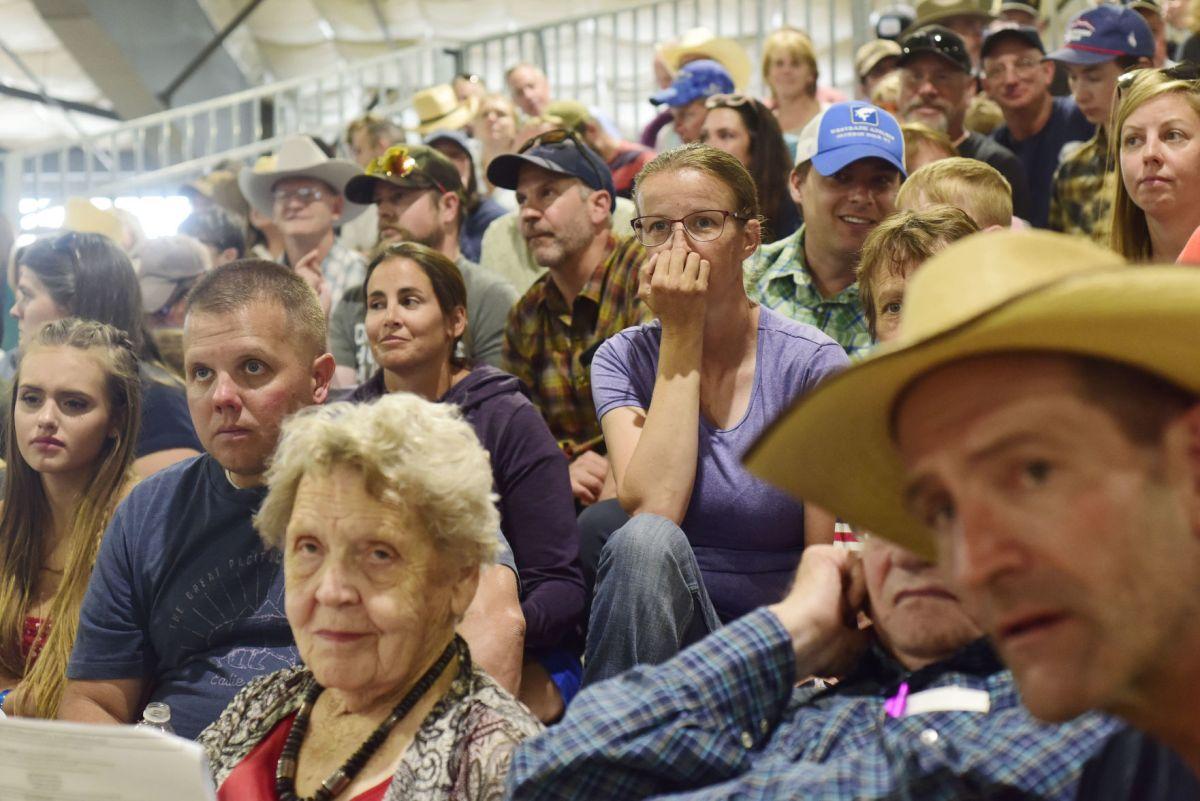 Teton County 4- Kids Auction Animals 've Raised