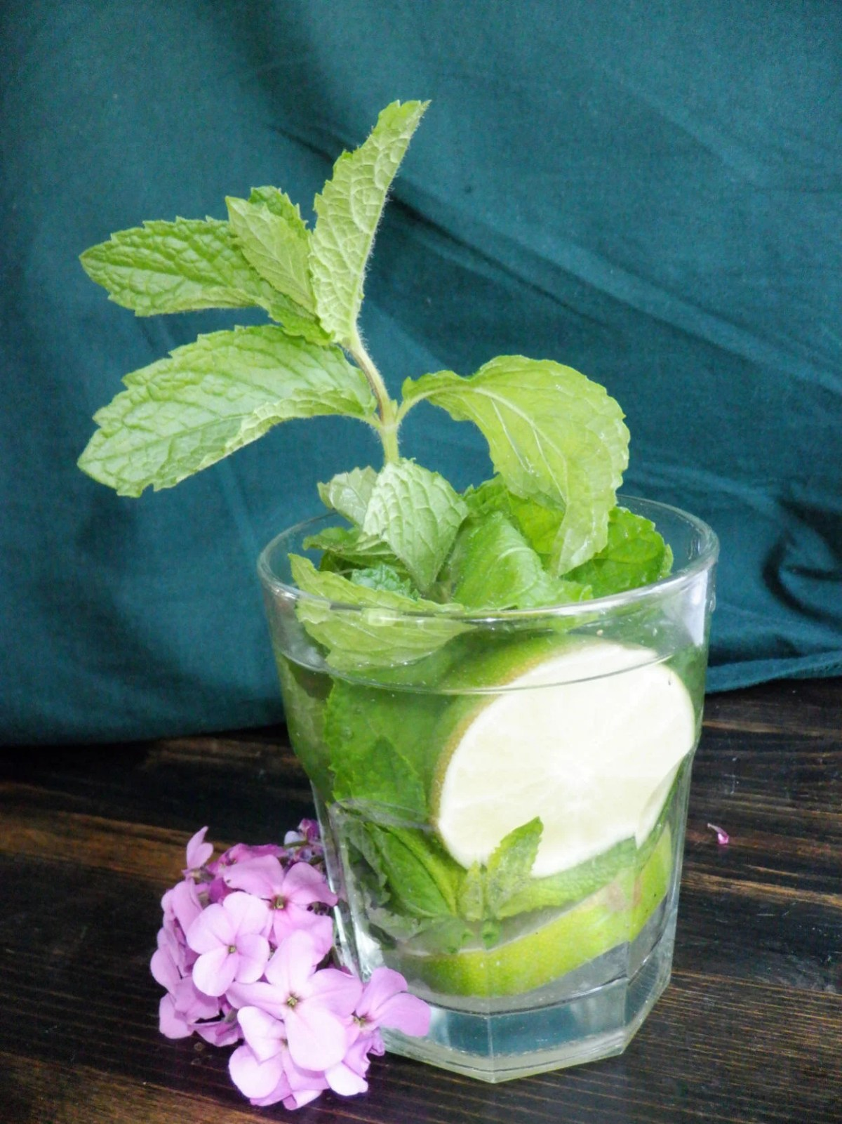 Resize Mint Patch : resize, patch, Containers,, Mojitos, Gardening, Jhnewsandguide.com