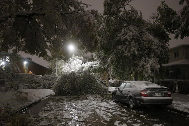 Power Fully Restored Two Weeks After Major Snowstorm Hit