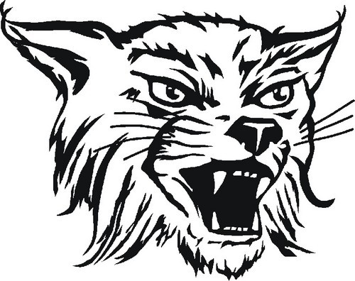 Wildcat Clipart Wildcat Basketball