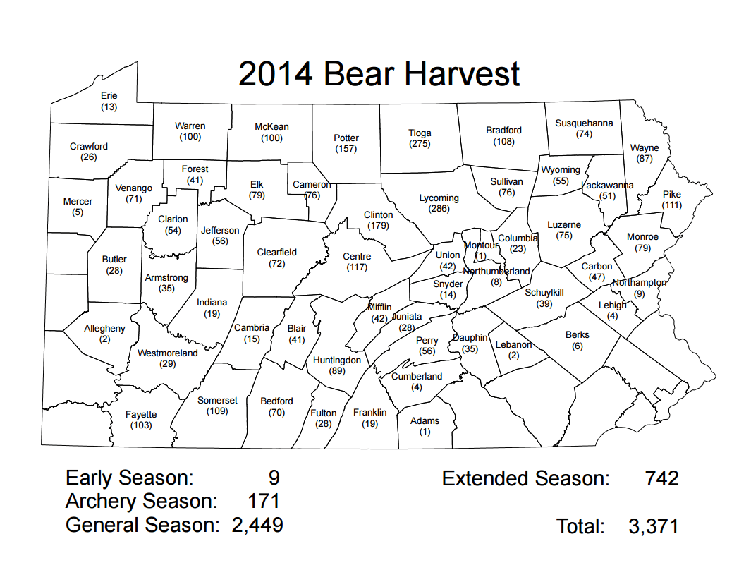 Black bear population up five-fold in Pennsylvania since