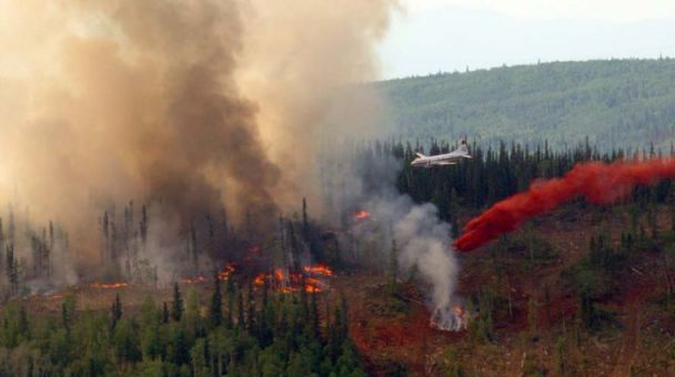Wildfire near Fairbanks closes Parks Highway - Fairbanks Daily News-Miner: Local News -- photo by Sam Harrel/News-Miner