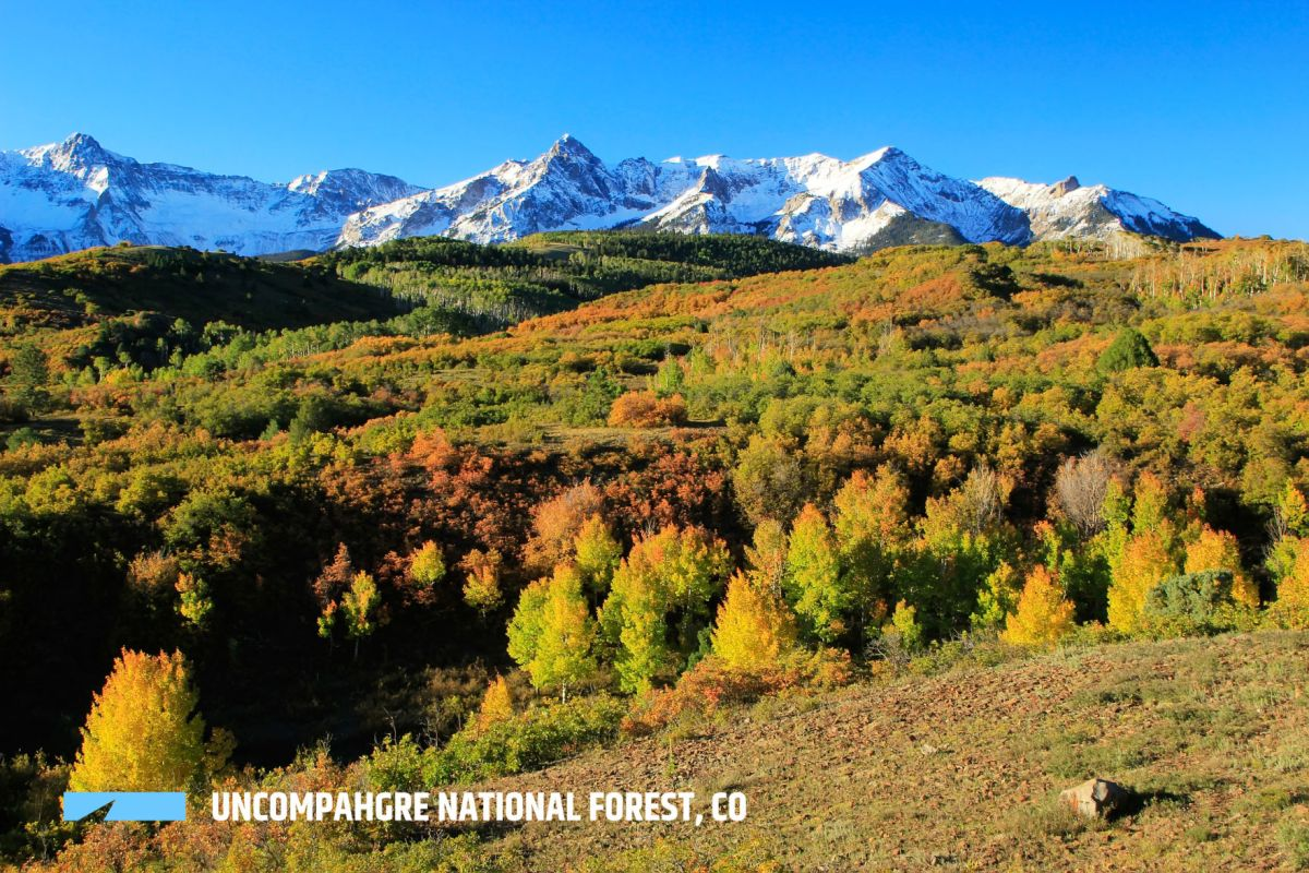 Updated 04/07/21 photography by laura tidwell/getty images covering more than 1.8 million acres, c. By The Numbers Colorado S 11 National Forests Outthere Colorado