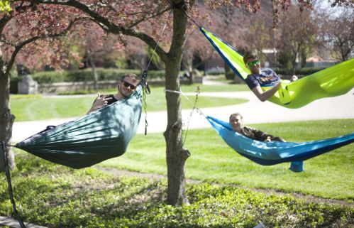 Image result for hammock purdue
