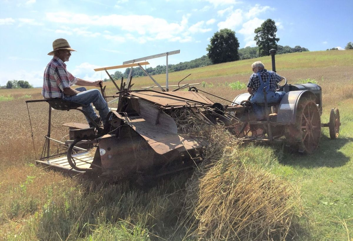 On the eve of the winter antiques show, barron's penta sought advice from three top exhibitors. Tractor Association Hosts Summer Show Of Antique Farming Equipment Latest Headlines Swvatoday Com