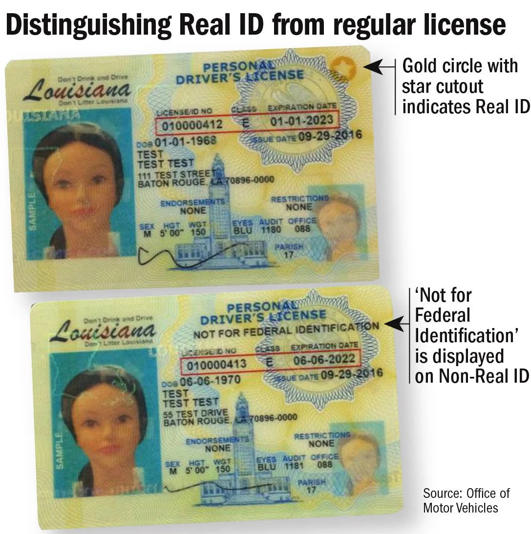 Example Driver S License California