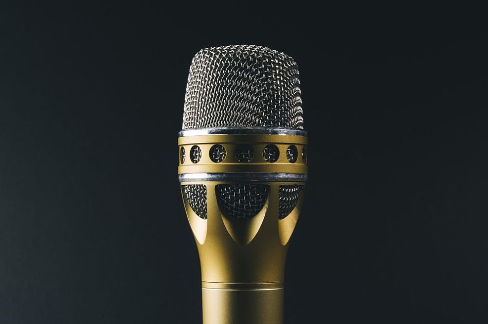 golden mic vox magazine