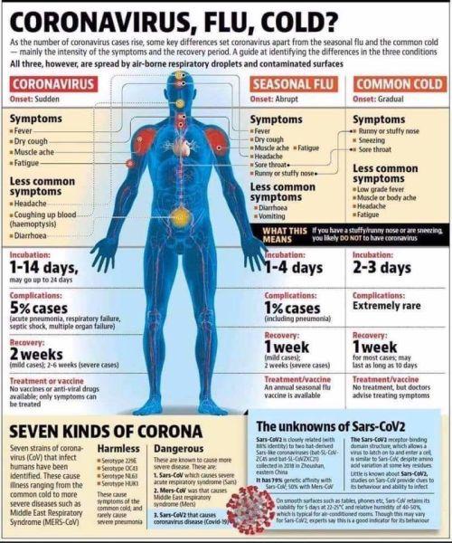 Coronavirus, flu, or cold? | Coronavirus Info | wfmz.com