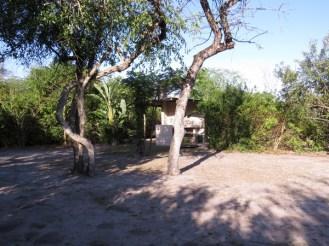 Ilala Palm campsite 2