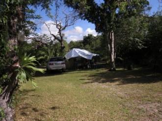 Ilala Palm campsite 3