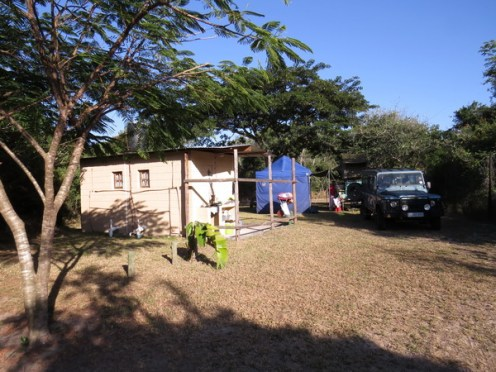 Ilala Palm campsite 6